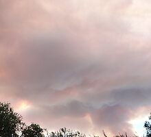 This taken as cloud of smoke came over our tree belt. Mt. Pleasant. S.A. by Rita Blom