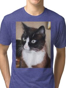 Pensive Kitty Tri-blend T-Shirt
