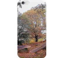 Central Park in Autumn iPhone Case/Skin