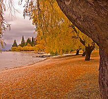 The shores of Lake Wakatipu by Hans Kawitzki