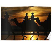 Sunset Camels Poster