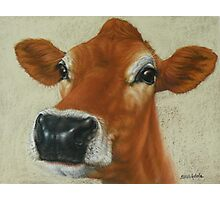 Pastel Cow Photographic Print