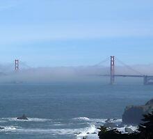 San Francisco 09 by Briana Castorina