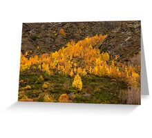 Golden Triangle Greeting Card