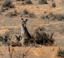 """""""Watercoloured""""  kangaroos by binjy"""