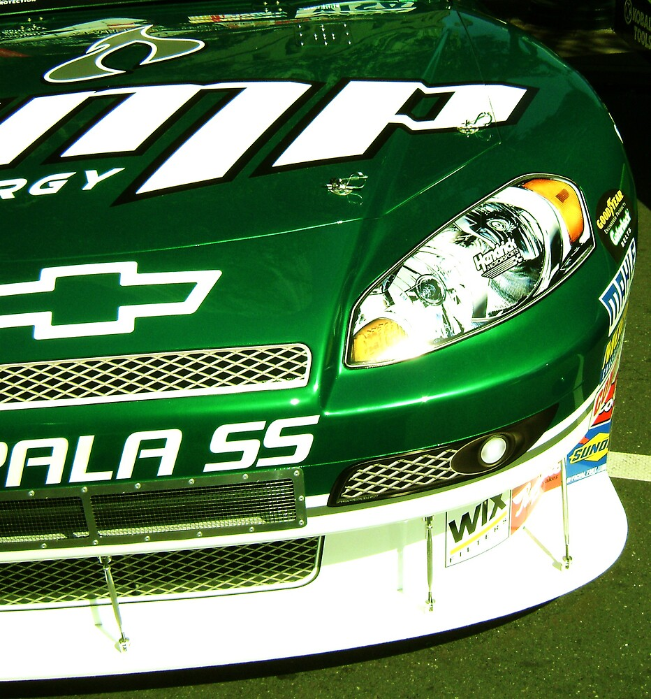Earnhardt Jr  Close-Up by Harlan Mayor