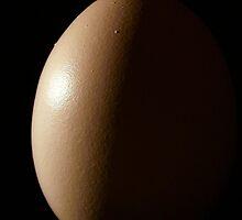 Half Moon Egg by Stephen Thomas