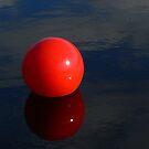 Buoy by Rosalie Scanlon