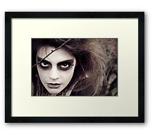 The Ravens Rag Doll Framed Print