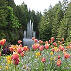 Butchart Gardens by Alison Murphy