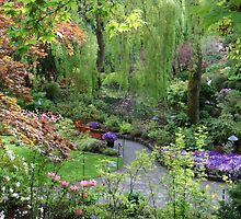 Butchart Gardens 2 by Alison Murphy