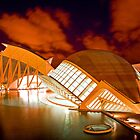 City of arts Valencia at night by naranzaria