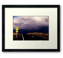 Dunedin Framed Print