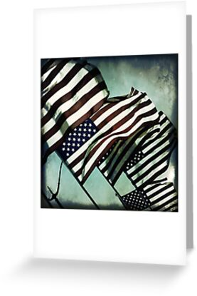 Stars 'n' Stripes by Trish Mistric