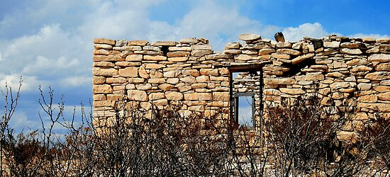 Terlingua Texas by Debbie Irwin