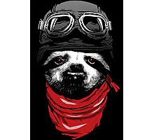Adventure Sloth Photographic Print
