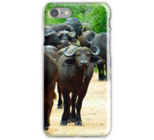 Hello Buffalo  iPhone Case/Skin