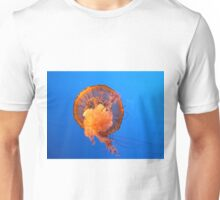 Jelly FIsh in the Blue T-Shirt