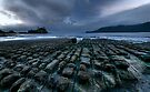 Sea Carved Tessellation  by Robert Mullner