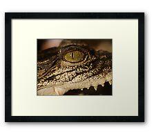 Green Eyed .. Framed Print