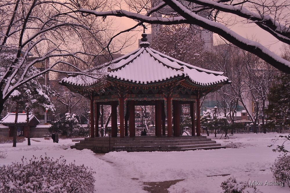 Tapgol Park in the Snow-Polarizer by Christian Eccleston