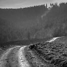 Road by hynek