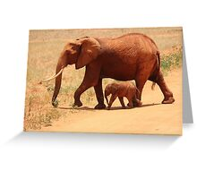 African Elephant Family Greeting Card