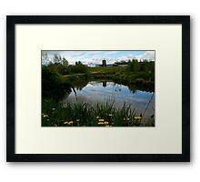 Noggin's Reflections Framed Print