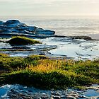 South Coogee Pt.3 by Chris Abraham