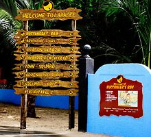 Welcome to Labadee by Shelley Neff