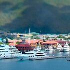 St. Thomas US Virgin Islands by Shelley Neff