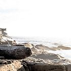 South Coogee Pt. 4 by Chris Abraham