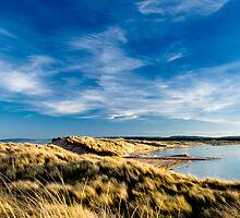 East Dunes by Blackgull
