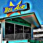bel air motel by vincent bruno