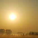 Early morning near Dijon - France by Arie Koene