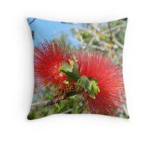 Radiant Red Bottlebrush Bloom Throw Pillow