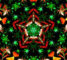 Orange and Green Star Kaleidoscope Mandala by TigerLynx
