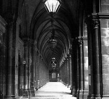 Rathaus Vienna Austria by Daniel Kazor