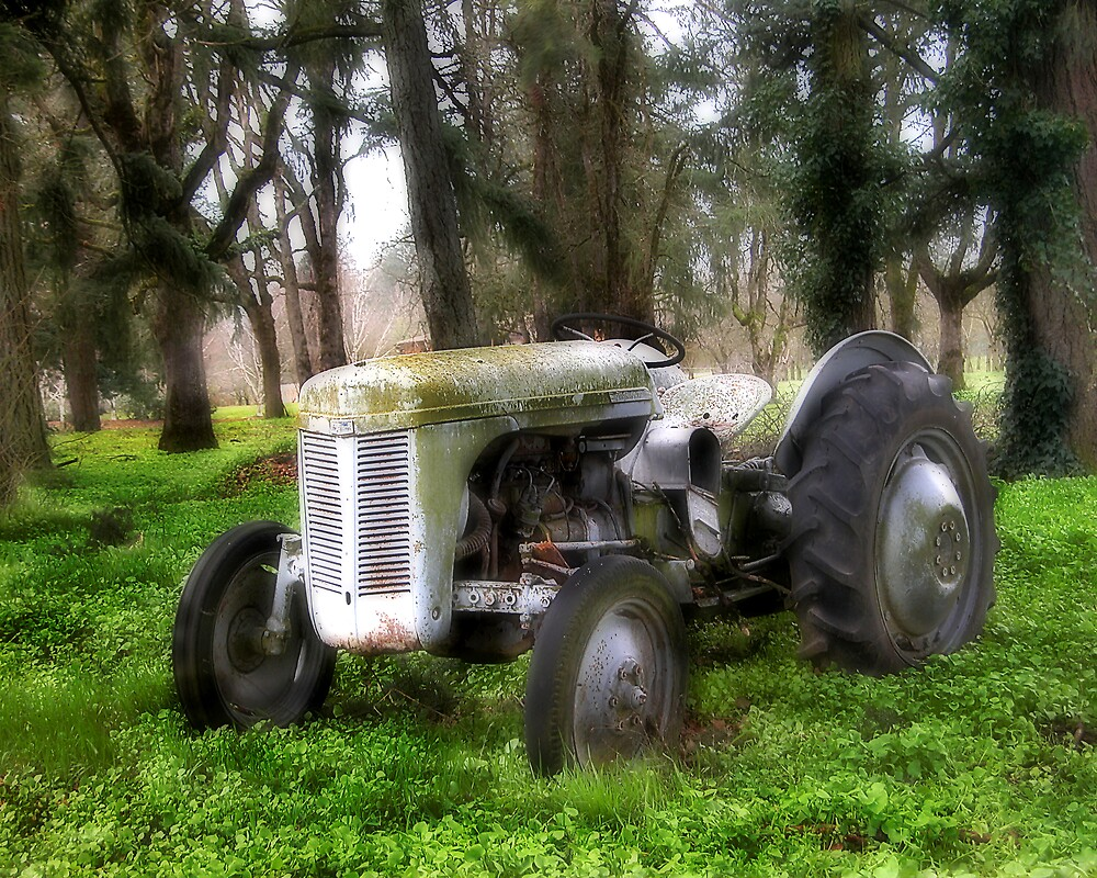 Remember the Good Ole Days by Cyndi Easterly