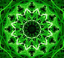 Grassy Green Kaleidoscope Mandala by TigerLynx