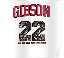 Chicago Bulls NBA - Taj Gibson v1.0 Poster