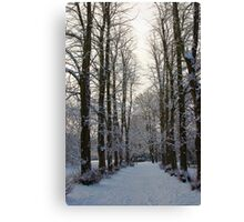 Winter Walk Canvas Print