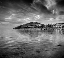 The Bluff by Steve Chapple