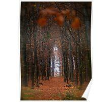 How to open door to paradise . Psalm 127:2 . #autumn . Andrzej Goszcz Poster
