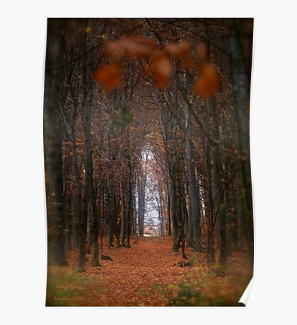 How to open door to paradise . Psalm 127:2 . #autumn . Andrzej Goszcz. Views 1307. Poster