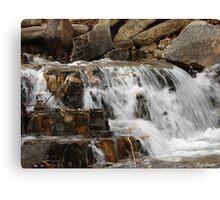 Water Rush Canvas Print