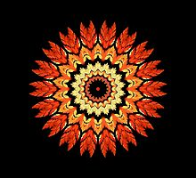 Orange Feather Kaleidoscope Mandala by TigerLynx