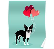 Boston Terrier Valentines Love Balloons gifts for dog lovers pet owners dog breeds customizable Poster