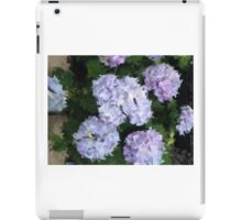 Life Through A Looking Glass iPad Case/Skin