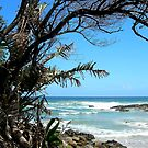 Port St Johns by Natalie Broome